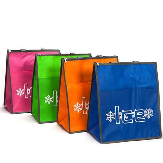 Cooler bag with tote